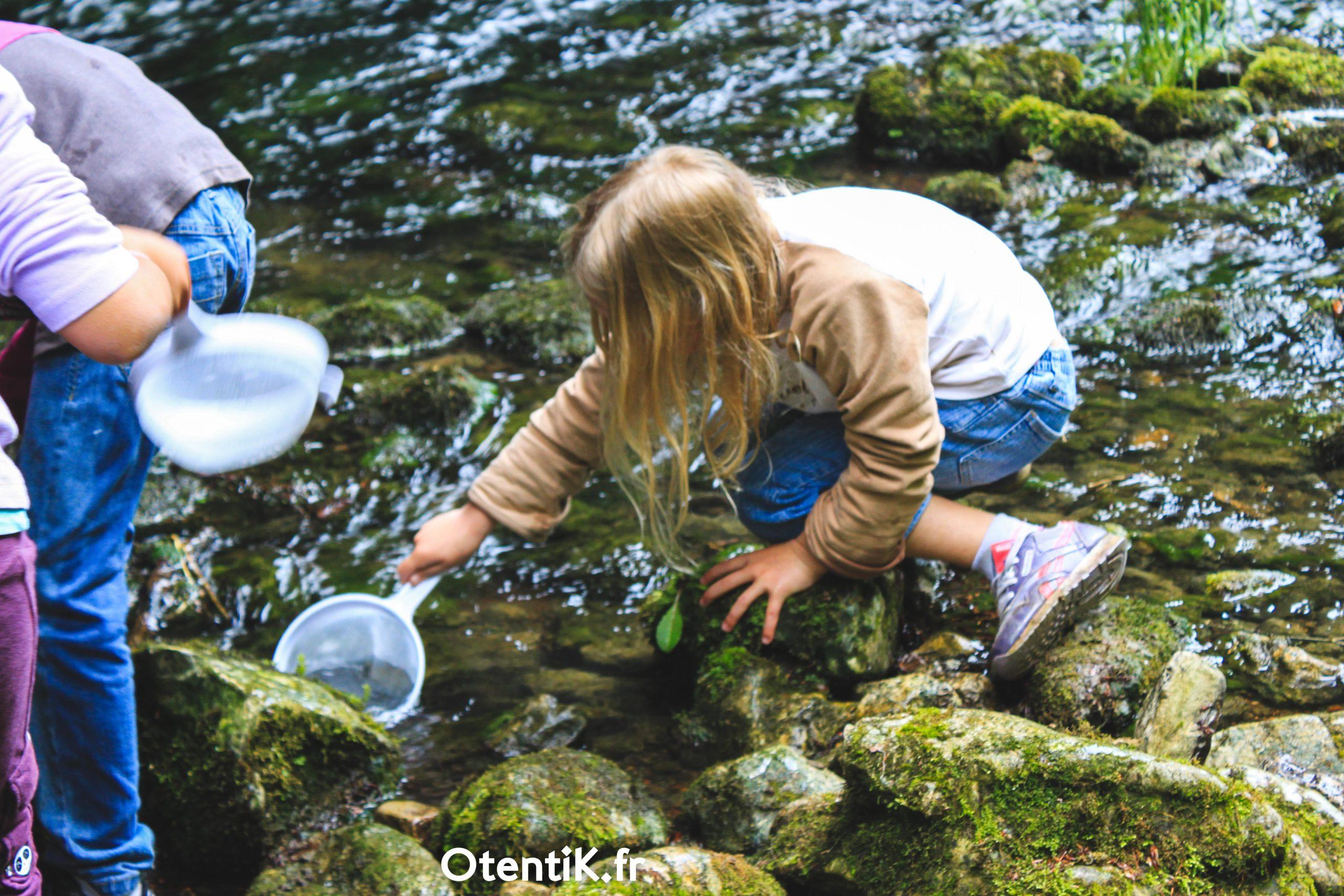 découverte rivière classe verte primaire