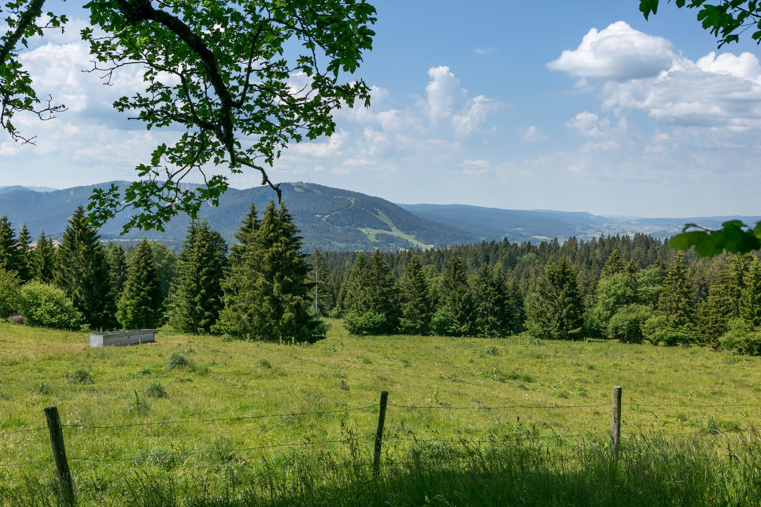 Vu depuis les Alpages Jura